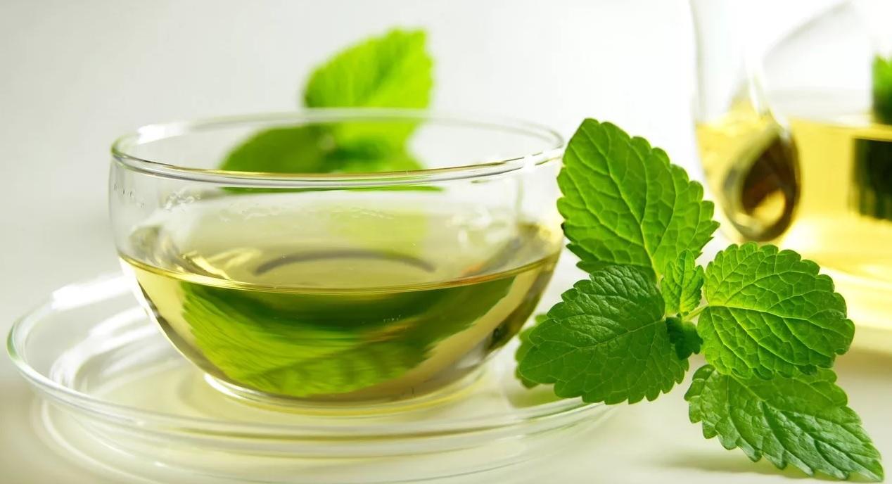 Зеленый чай блокирует СПИД